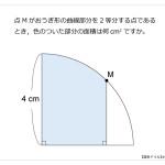 第19問 おうぎ形と垂線