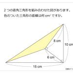 第88問 直角三角形と面積