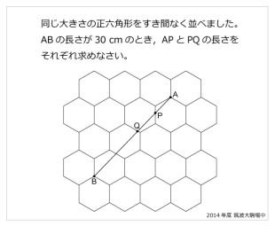 筑波大附属駒場中(2014年)