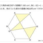 第151問 正六角形の面積の和