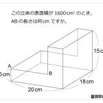 レベル5 表面積からの逆算